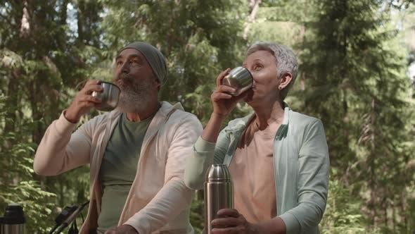 Thumbnail for Senior-Paar trinken Tee im Wald