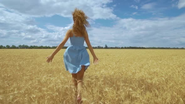 Thumbnail for Rear View of Young Carefree Woman in Dress. She Run in Through Field Touching with Hand Wheat Ears