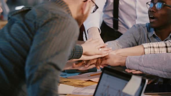 Thumbnail for Close-up Shot of Happy Multiracial Business Partners Put Hands Together As a Team Over Office Table
