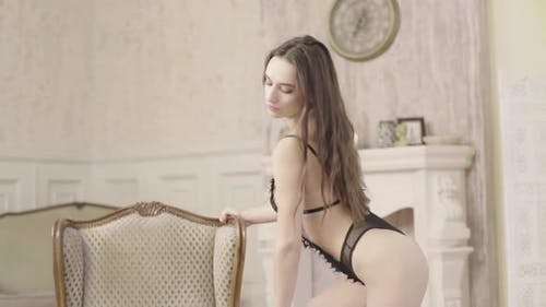 Beautiful Erotic Girl in Sexy Lingerie