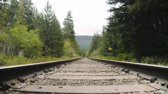 Thumbnail for Rail Way in the Middle of the Woods