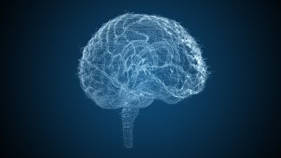 Brains HUD