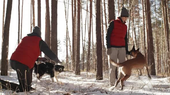 Cover Image for Man and Woman Playing with Dogs Outdoors