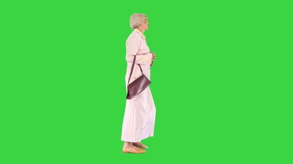 Thumbnail for Attractive Intelligent Senior Woman Walking on a Green Screen, Chroma Key.