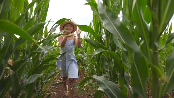 Thumbnail for Close Up of Happy Small Child in Straw Hat Running To the Camera Through Corn Field at Overcast Day