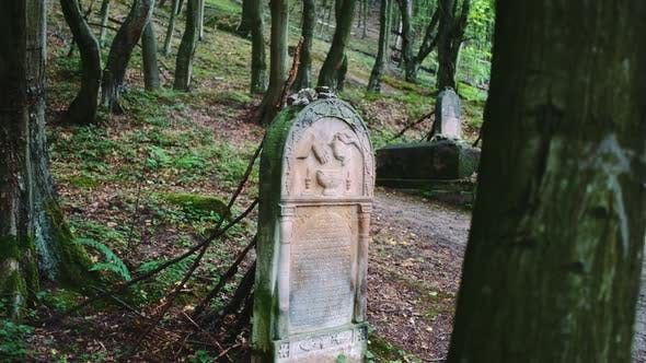 Thumbnail for Old Cemetery with Jewish Tombstones