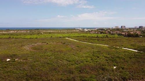 Juno Dunes Preserve Florida