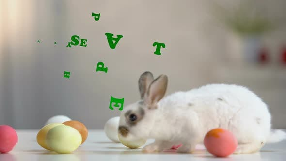 Thumbnail for Happy Easter Inscription, Furry Bunny With Colored Eggs on Table, Greeting Card