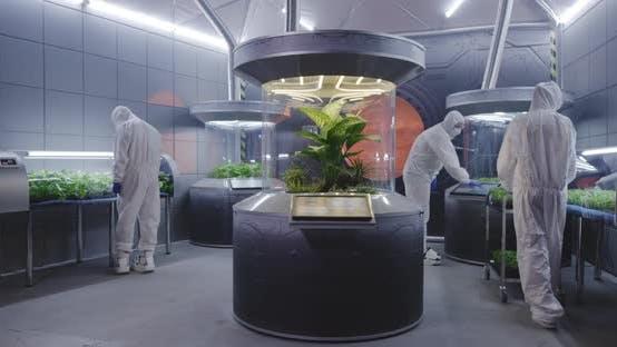 Scientists in Hazmat Suit Checking Plant Incubators