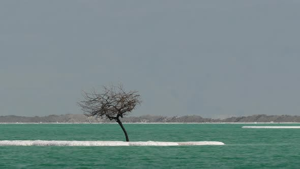 Salty Islets in Pure Water of Dead Sea