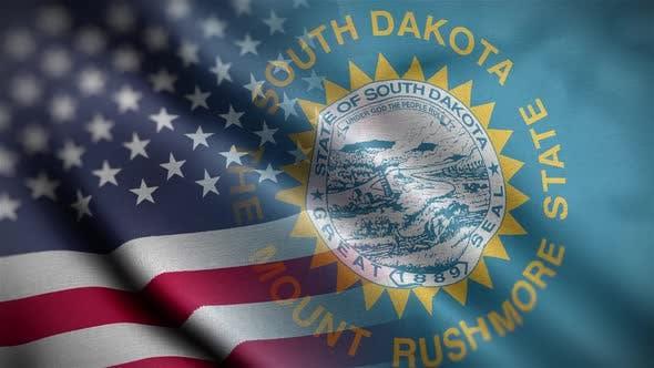 South Dakota State Usa Mixed Flag Close Up HD