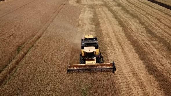 Thumbnail for Drohne Footage von Golden Fields und Mähdrescher