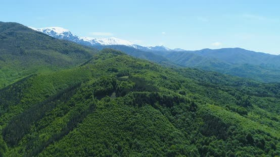 Panoramic View of Snowy Mountain Range and Magnificent Green Forest and Hills. Majestic Mountain