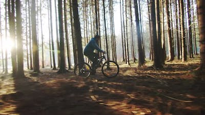 Off Road Cyclist In The Forest