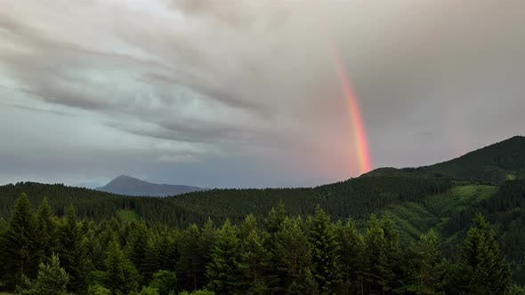 Thumbnail for Rainbow over Forest Time Lapse. Sky after Storm Rain