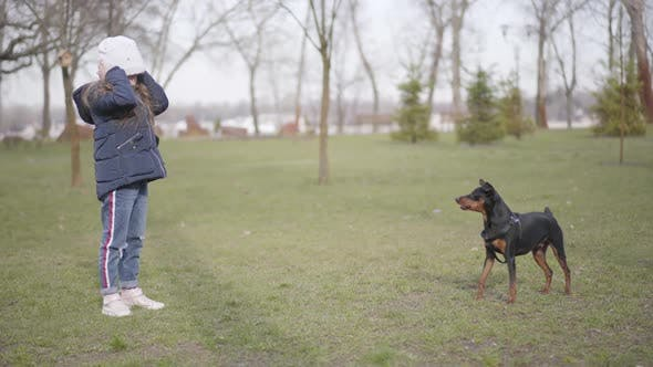 Thumbnail for Little Caucasian Girl Kicking Away Barking Dog in Park. Wide Shot of Frightened Kid and Angry