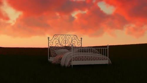 Bed In a Field