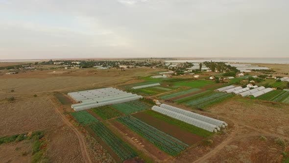 Greenhouses On Agricultural Fields