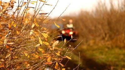Autumn Yellow Leaves And ATV Quad Bike