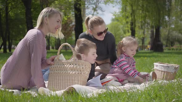 Thumbnail for Portrait Cute Family Outdoor Recreation. Two Beautiful Young Mothers and Their Children at a Picnic