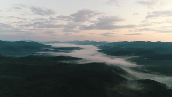 Thumbnail for Fog Over Coniferous Forest in the Mountains at Sunrise