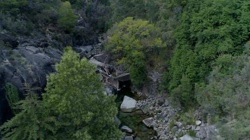 Aerial River Forest Nature Landscape