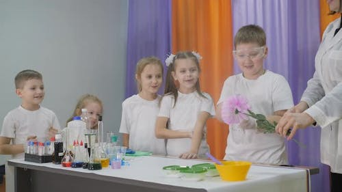 Chemical Experiments for Children, Fun Experiments for Children, A Woman Conducts Cognitive Science