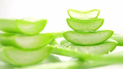 Aloe Vera leaves. Aloe Vera gel is very useful herbal medicine for skin care