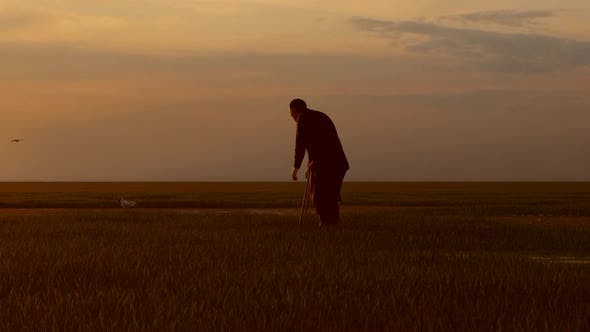 Thumbnail for Elderly Man Walking Alone In Empty Land At Sunset