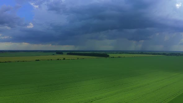 Thumbnail for Aerial View Of The Thundercloud Above The Field
