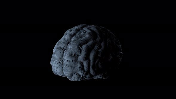 Synthetic Artificial Brain 4K