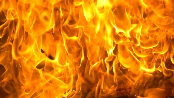 Thumbnail for Huge Golden Flames Rising