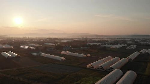 Agricultural Fields with Greenhouses Plantation at Sunset