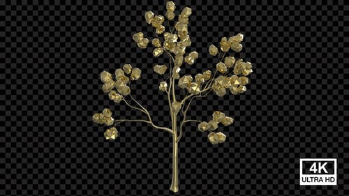 Growing Golden Platonic Tree 4K