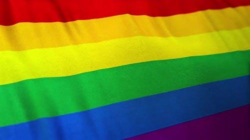 Rainbow Gay Pride Flag Loop