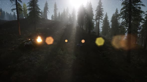 Thumbnail for Campfire at Mountain Rorest at Night