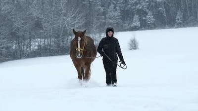 Woman Walking With Horse in Winter Slow Motion