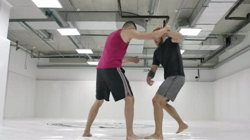 GrecoRoman Wrestlers in a White Room with Mats
