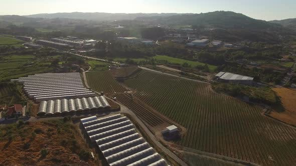 Thumbnail for Flying Over Greenhouses and Agricultural Fields