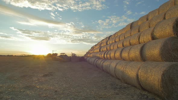 Thumbnail for Stack of round hay bales seen in the evening
