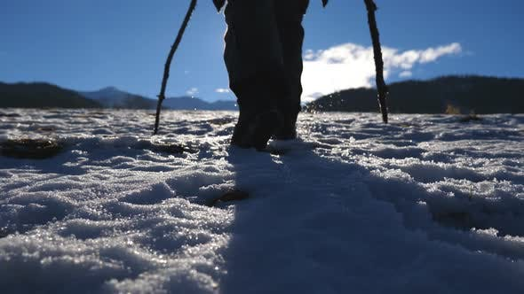 Cover Image for Unrecognizable Guy Goes Nordic Walking with Sticks on Snow Field at Sunny Day. Young Hiker Treks on