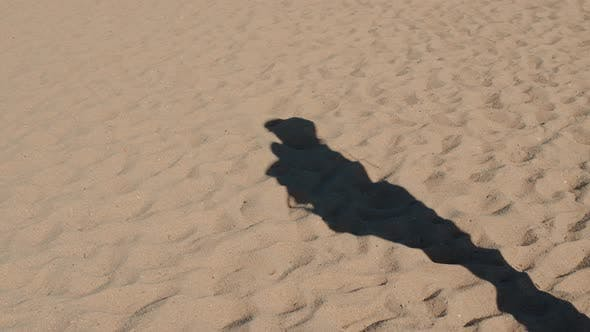 Long Shadow of the Man Standing on the Sandy Beach Walking