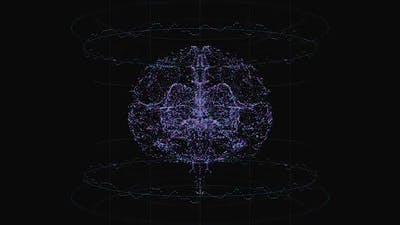 Digital Brain 03