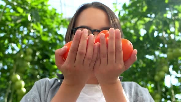 Young Woman Hands with Gloves Holding Red Tomatoes, Working in a Greenhouse.