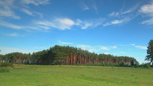 Thumbnail for Time Lapse of Pasture and Forest