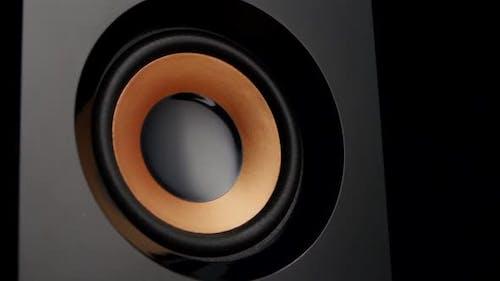 Loudspeaker Shot with Membrane Movement. Closeup