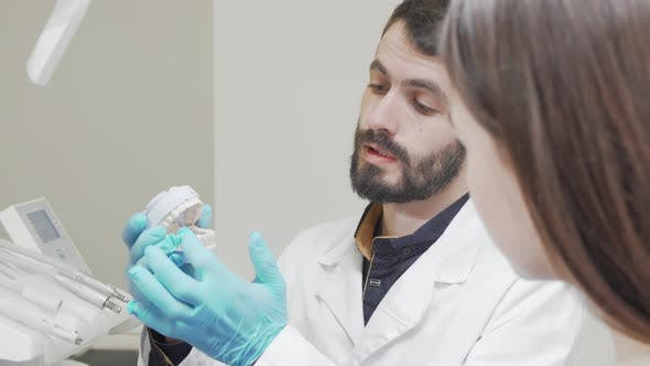 Cropped Shot of a Professional Dentist Showing Teeth Mold to His Patient