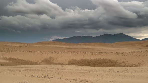 Thumbnail for Nach Regen in der Wüste