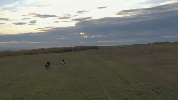 Two Riders Gallop Across the Field. Aerial Shot