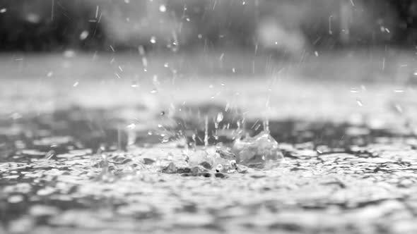 Thumbnail for Close up view of rain drops on water in slow motion